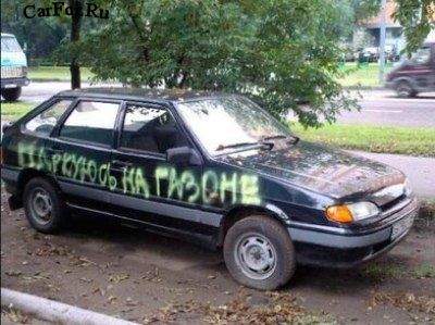 Как качественно и надолго убрать с газона авто обнаглевшего соседа